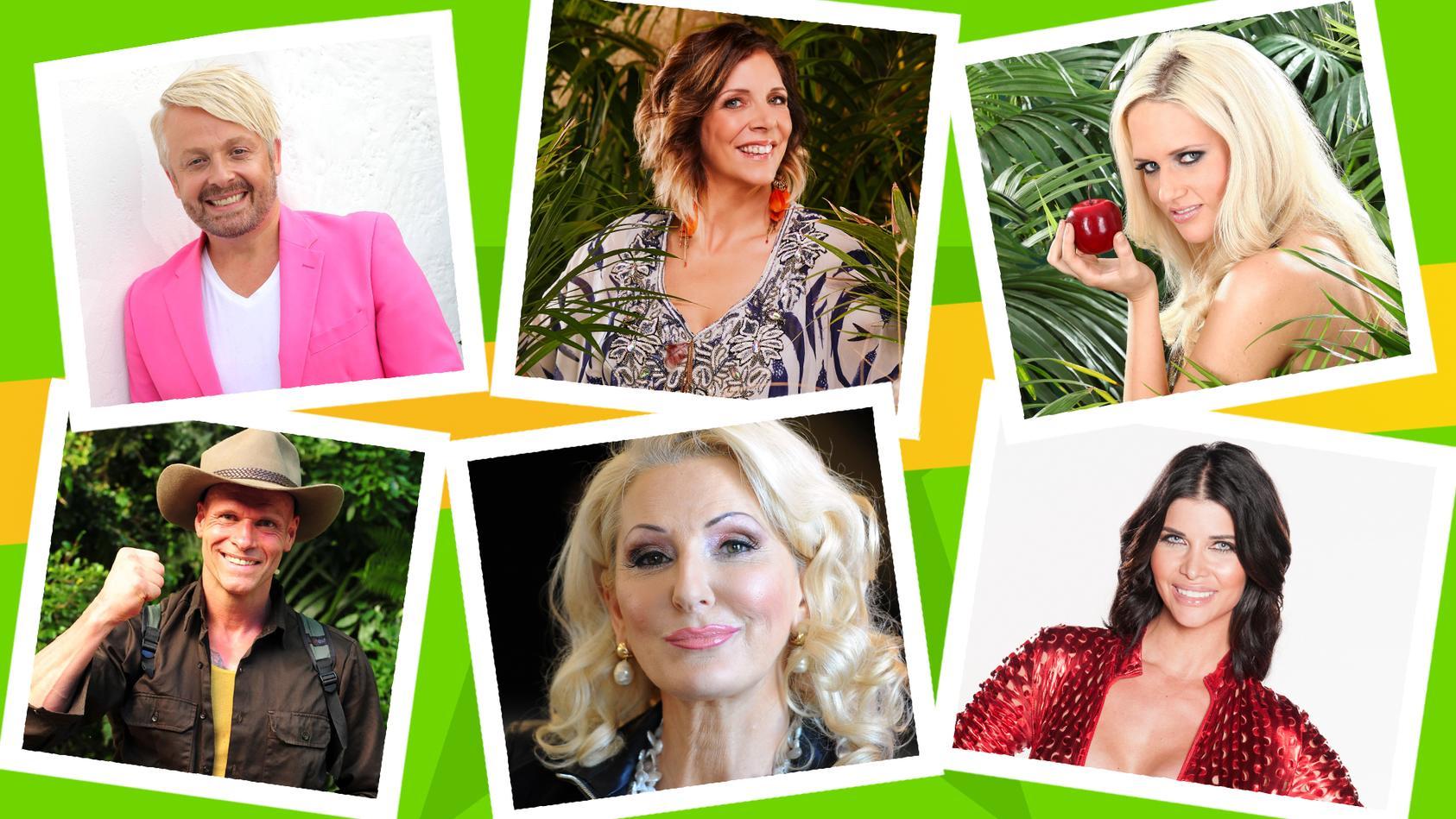 """Unter den Talk-Gästen in der Dschungelshow 2021 sind auch zahlreiche SiegerInnen der vergangenen Staffeln von """"Ich bin ein Star - Holt mich hier raus!"""""""