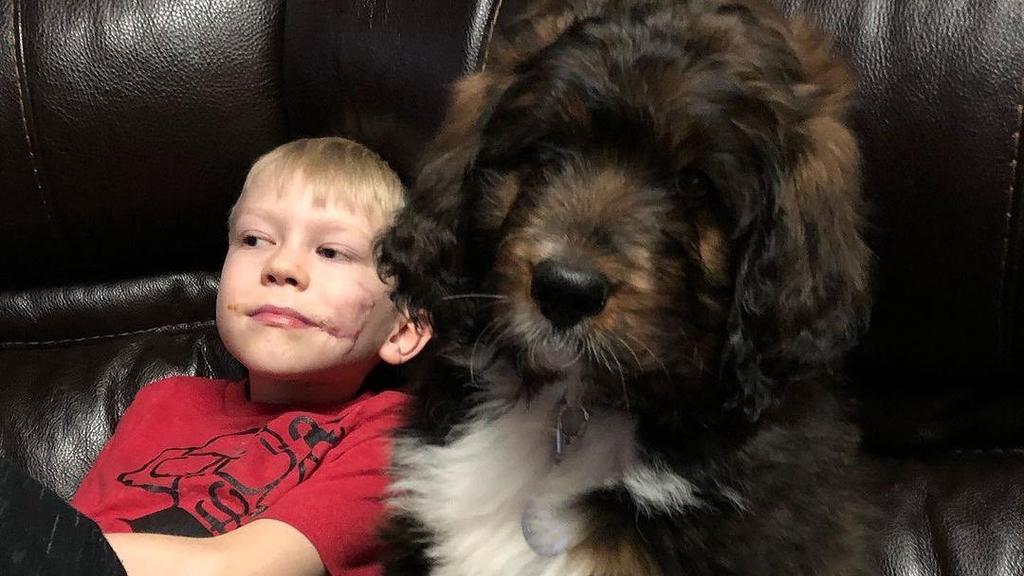 Bridger mit einem Hund auf der Couch