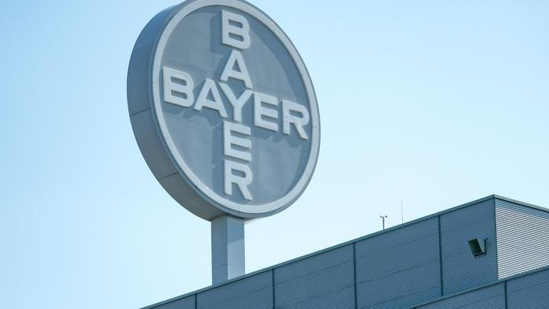Gen- und Zelltherapien sollen das Wachstum des Bayer-Konzerns ankurbeln. Foto: Hendrik Schmidt/dpa-Zentralbild/dpa