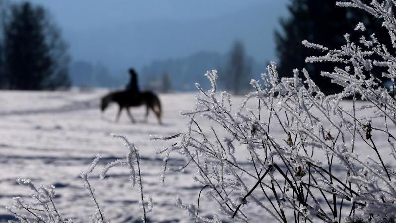 Eine Frau durchstreift auf ihrem Pferd die winterliche Landschaft. Foto: Karl-Josef Hildenbrand/dpa/Archivbild