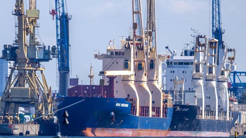 Frachtschiffe liegen in einem der Hafenbecken von Rostock Port im Überseehafen. Foto: Jens Büttner/dpa-Zentralbild/ZB/Symbolbild