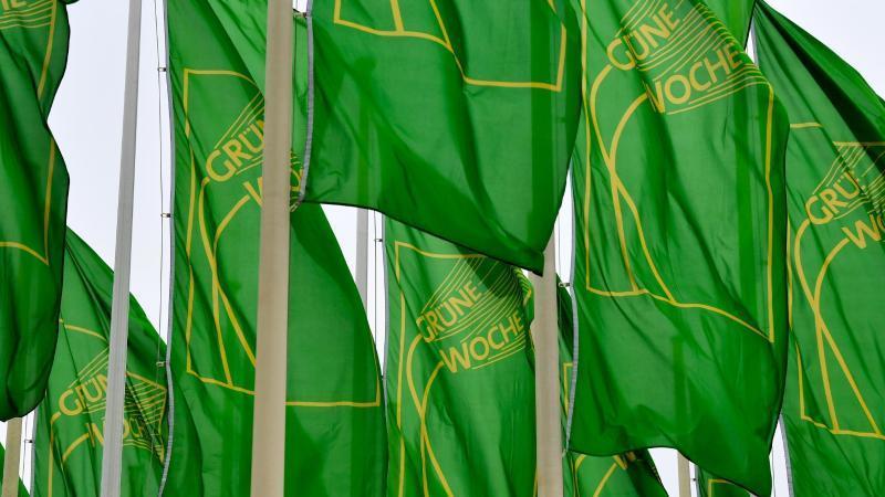 Fahnen der Internationalen Grüne Woche wehen auf dem Messegelände. Foto: Jens Kalaene/dpa-Zentralbild/dpa