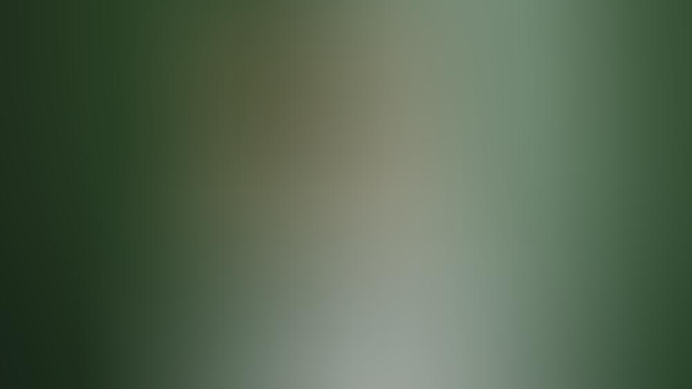 Niko Griesert ist der neue Rosenkavalier bei RTL.