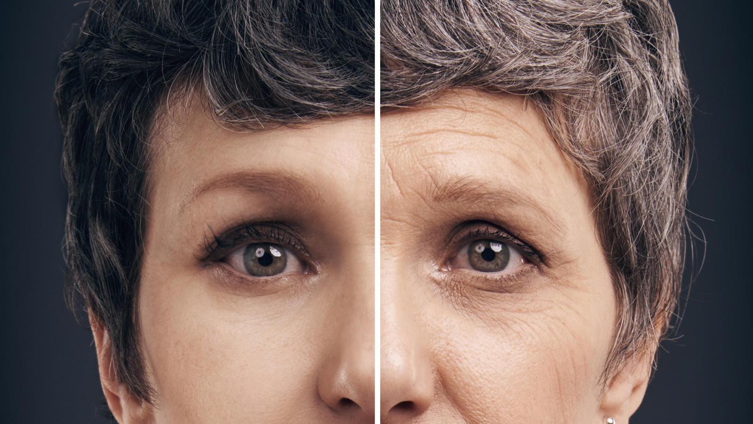 Chinesische Forscher haben ein Gen entdeckt, dass den Alterungsprozess beeinflusst.
