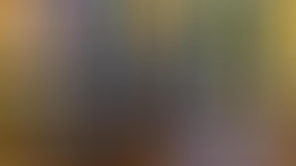 Joe Biden ist im Oval Office eingezogen.