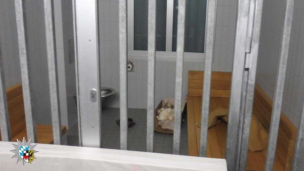 Malteserwelpen in Polizeizelle