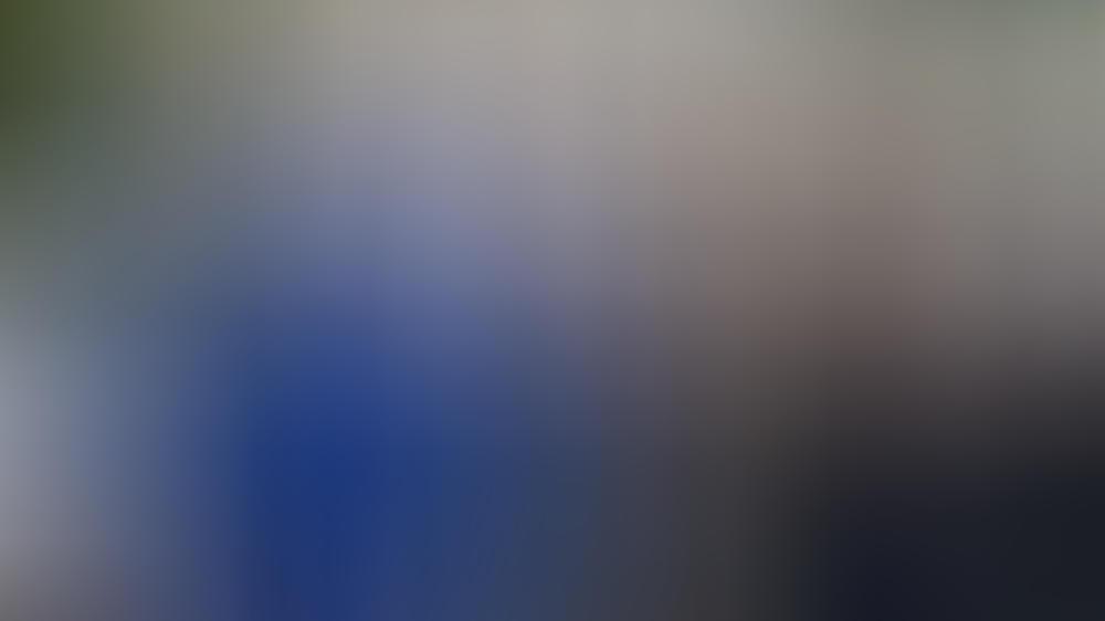 """Herzogin Kate und Prinz William sind """"völlig vernarrt"""" in ihren neuen Hund."""