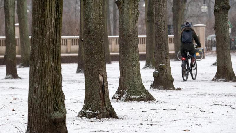 Eine Frau fährt mit dem Fahrrad über einen schneebedeckten Weg im Berliner Tiergarten. Foto: Bernd von Jutrczenka/dpa/Archivbild