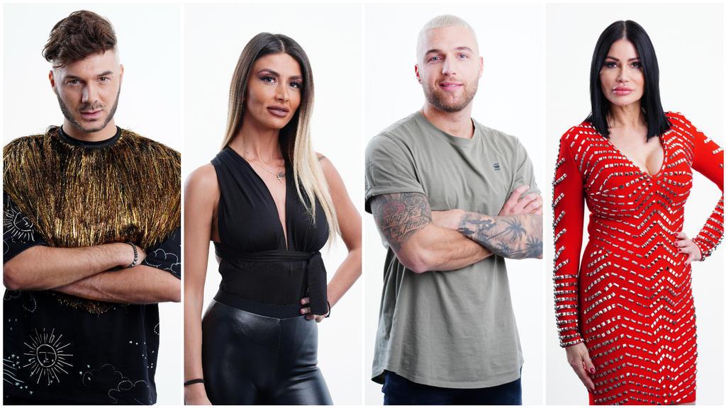 Sam Dylan, Christina Dimitriou, Filip Pavlović und Djamila Rowe sind im Halbfinale.
