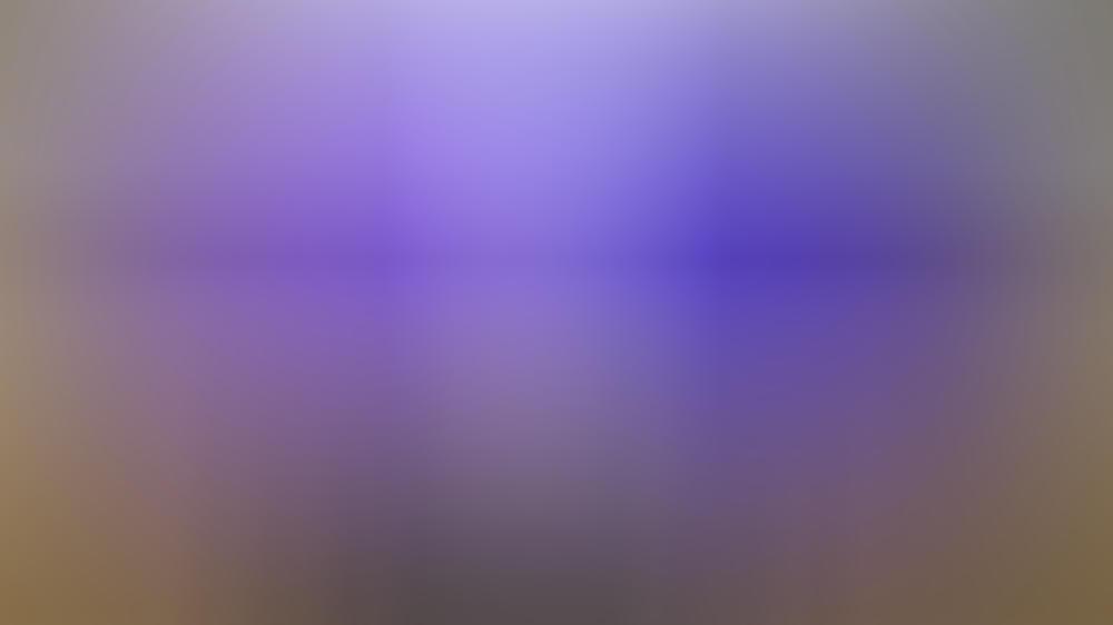 Die Erweiterung um die Marke Star bringt zahlreiche neue Serien und Filme auf Disney+.