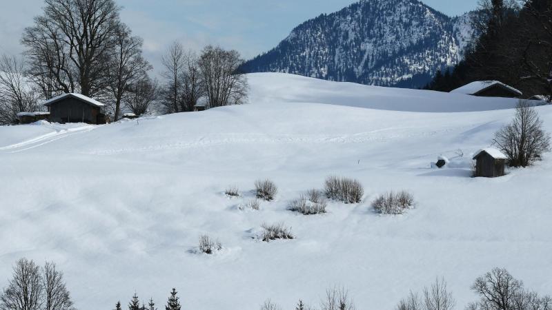 Heustadel stehen im Wettersteingebirge im Schnee. Foto: Angelika Warmuth/dpa