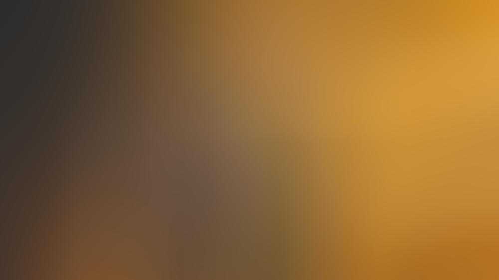 Serj Tankian, der Sänger von System of a Down, hat armenische Wurzeln.
