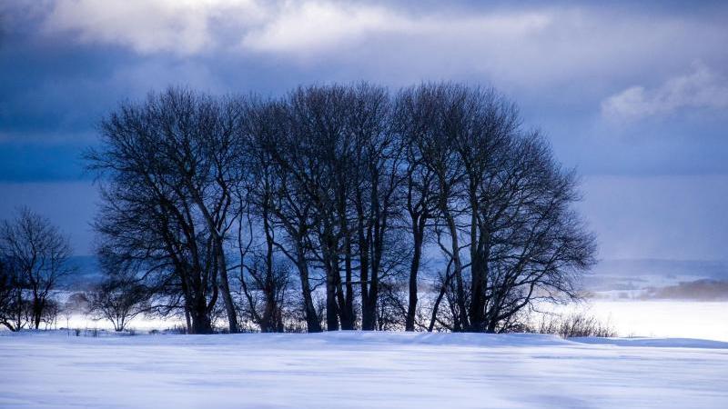 Dunkle Schneewolken ziehen über die verschneite Landschaft. Foto: Jens BüŸttner/dpa-Zentralbild/dpa/Archivbild