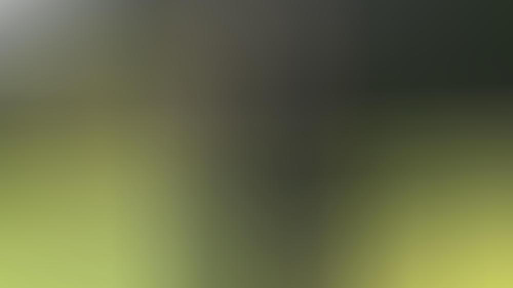 Captain Tom Moore wurde 2020 von der Queen persönlich zum Ritter geschlagen