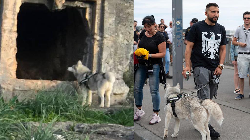 Demonstration gegen Corona-Einschränkungen - Attila Hildmann mit Hund