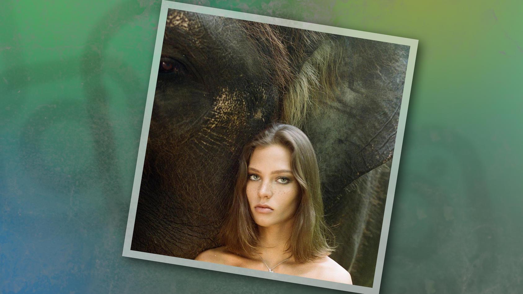 """Alesya Kafelnikova (22)  entschuldigt sich nach Foto-Shitstorm: """"Ich liebe Elefanten."""""""