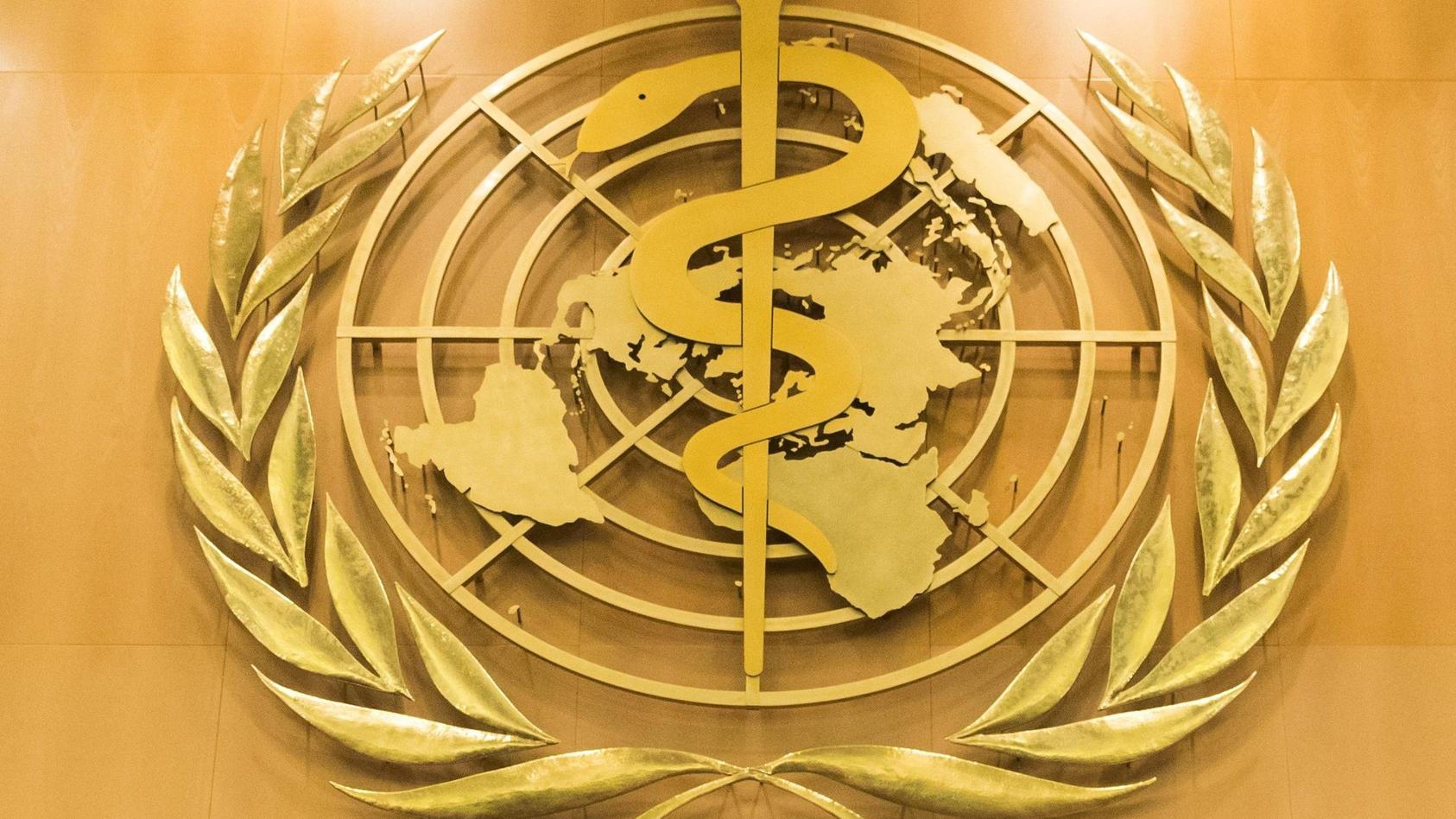 UN-Bericht: Ein Viertel von Krankheitsbelastung durch Umweltrisik