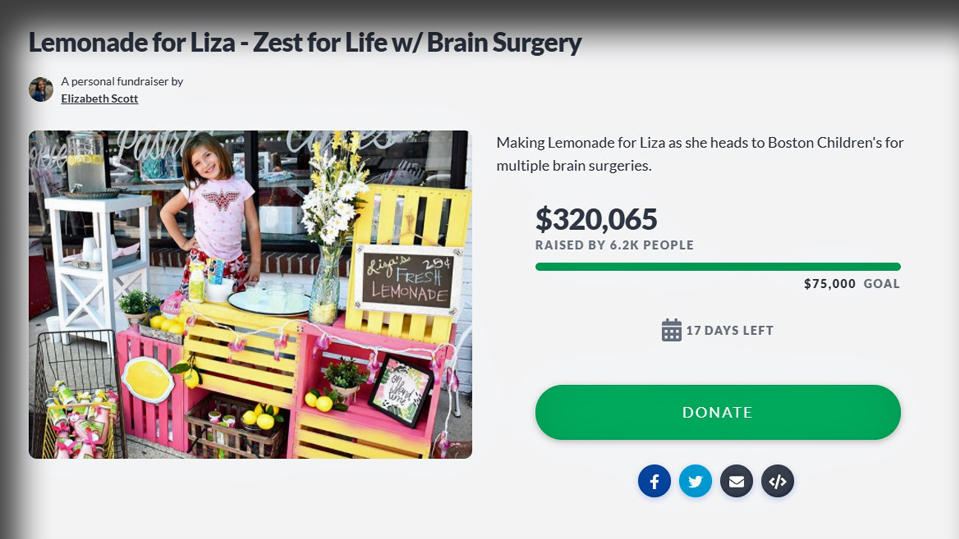 Spenden für Lizas Gehirnoperationen.
