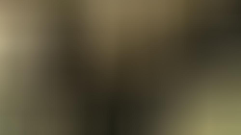 Das BBC-Interview von Prinzessin Diana schrieb Geschichte.