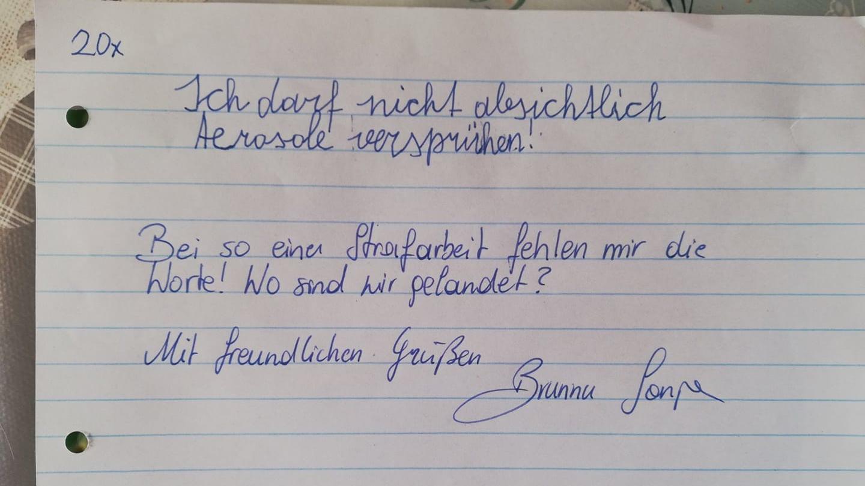 Ein Lehrer aus Kärnten in Österreich gab seinem Schüler diese Strafarbeit.