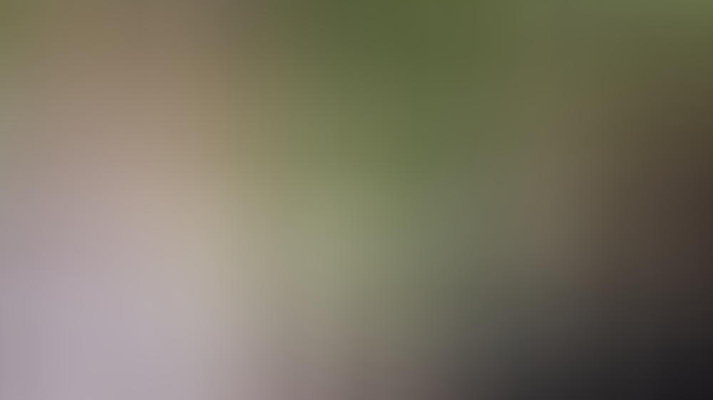 Herzogin Meghan und Prinz Harry stellen sich den Fragen von Oprah Winfrey.