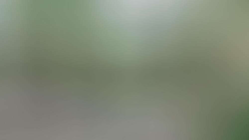 Prinz Harry und Herzogin Meghan bei ihrem Oprah-Interview