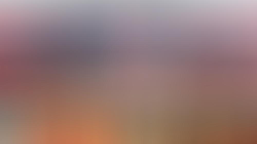Rock-im-Park-Fans müssen auch 2021 auf das Festival verzichten.