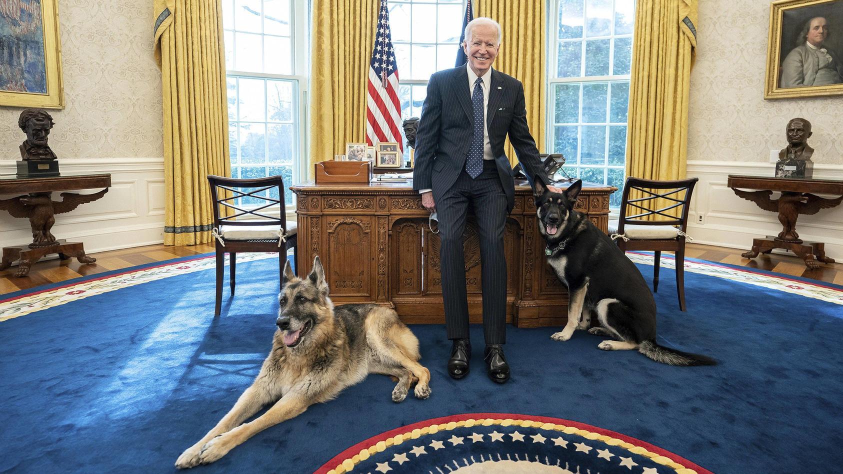 Washington, die Hunde von US-Präsident Biden müssen das Weiße Haus verlassen - Archivbilder STYLELOCATIONU.S President J
