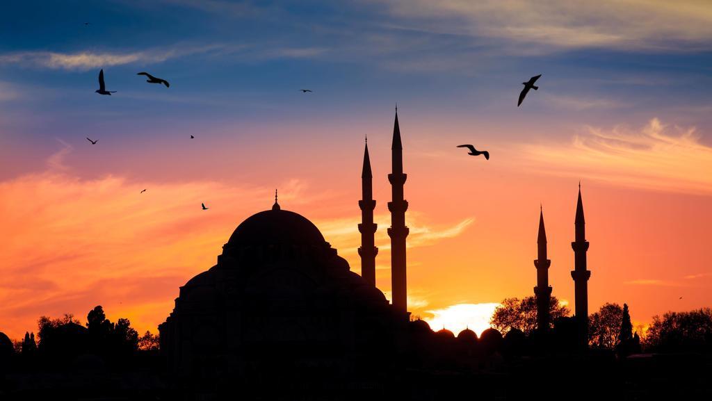 Mosque in the night in istanbul Turkey PUBLICATIONxINxGERxSUIxAUTxONLY Copyright: xNakedkingx Panthermedia24546218