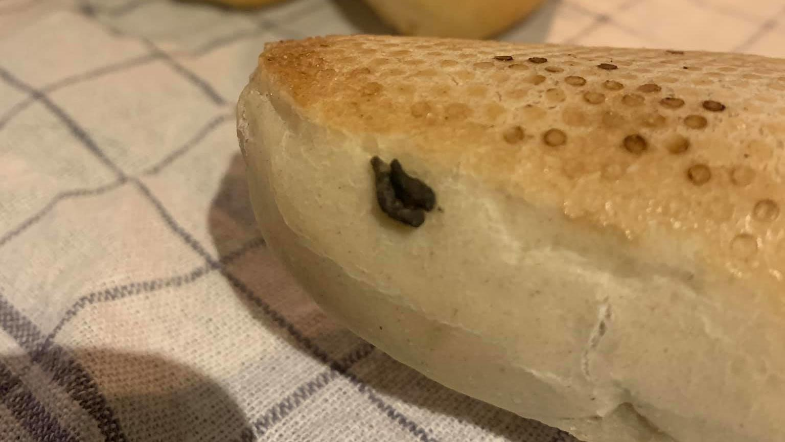 Ein Kunde fand vermutlich Nagerkot auf dem Baguette-Brötchen des Supermarktes Edeka.