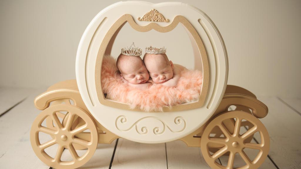 Zwei Babys liegen in einer Bettkutsche