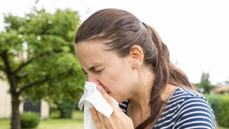 Wenn es im Frühjahr blüht, haben viele Pollenallergiker mit Niesattacken und einer immerzu laufenden Nase zu kämpfen. Foto: Christin Klose/dpa-tmn