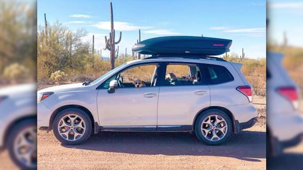 Der weiße Subaru von Alexander Lofgren und Emily Henkel