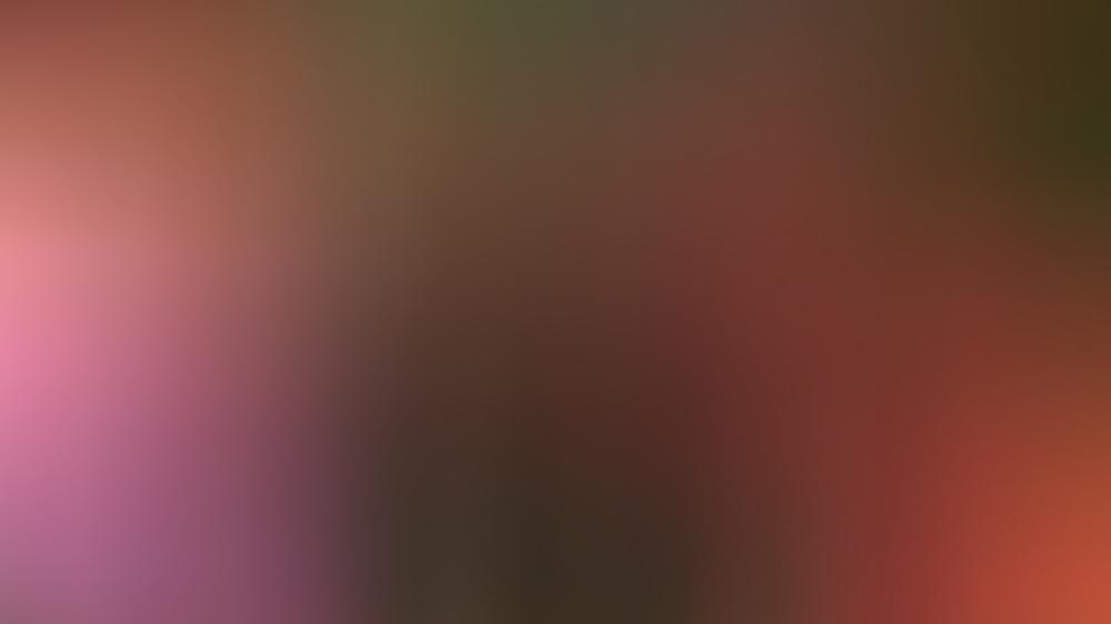 V.l.: Annette Steiner-Kienzler, Nadja Arbab und Maximiliane Staiger überzeugen fast alle Löwen mit ihrem zuckerfreien Brain-Food.