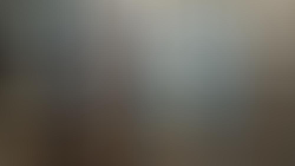 Boris Johnson begrüßt Queen Elizabeth II. bei einer Audienz im Buckingham Palast 2019.