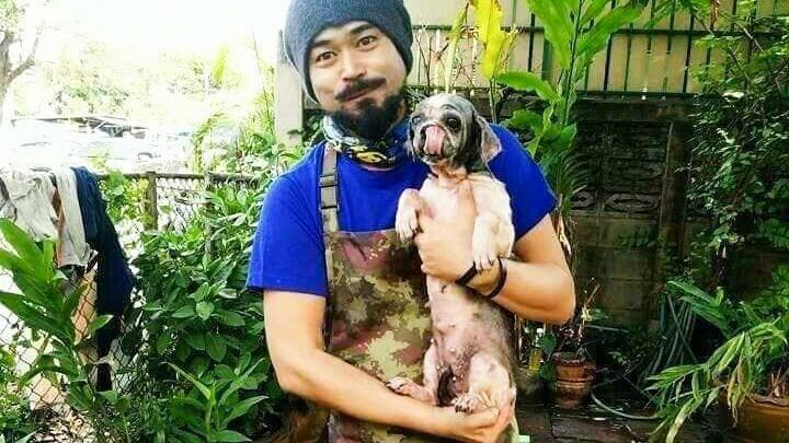 Endlich sieht sie wieder aus, wie ein normaler Hund und kann ein neues, glückliches Hundeleben führen.