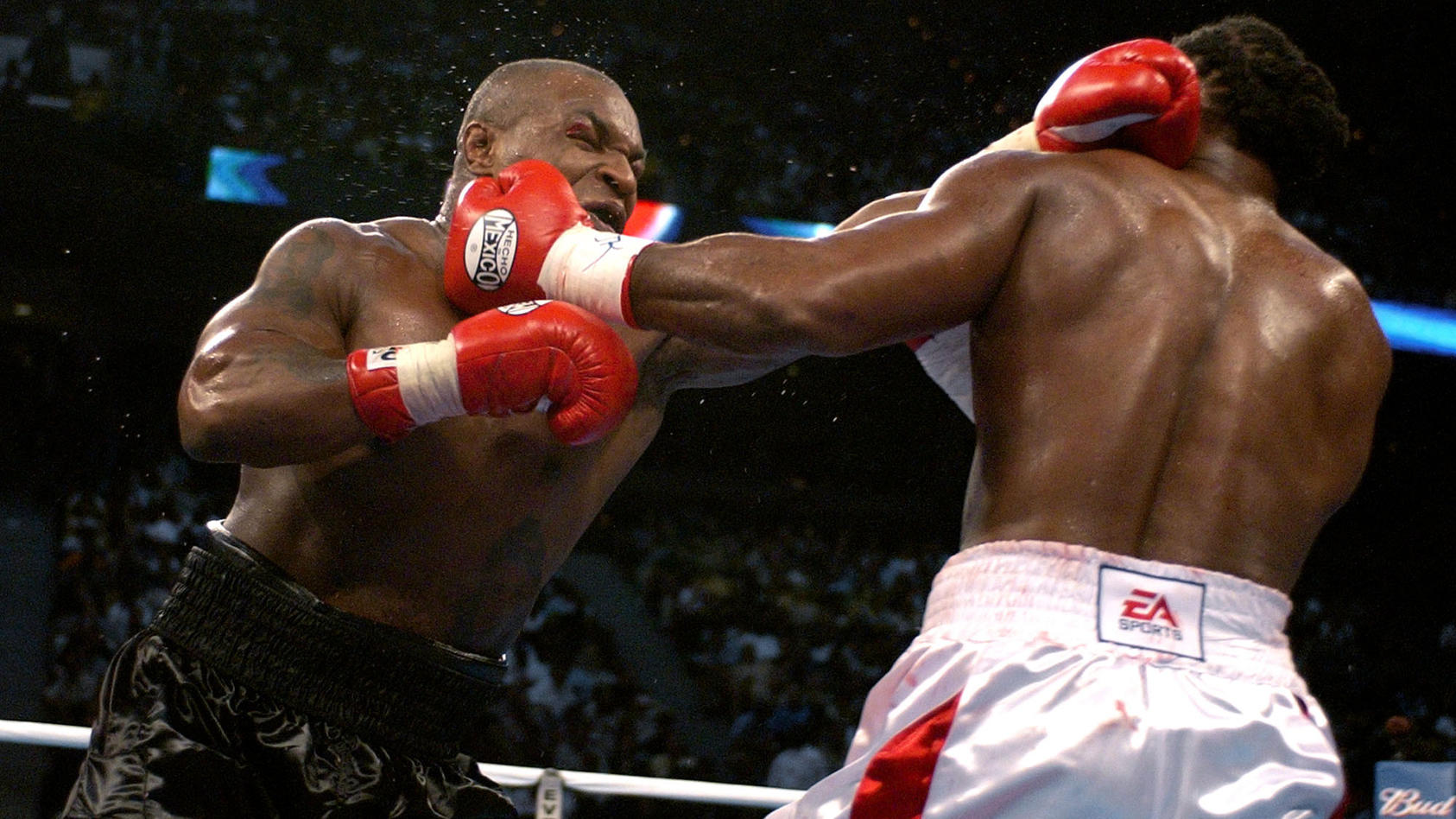 Tyson vs. Lewis