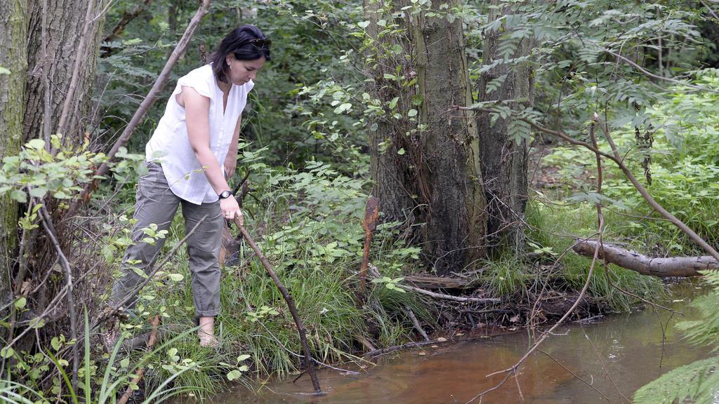 Annalena Baerbock nutzt jede freie Minute mit ihrer Familie in der Natur. Ihre Wahlheimat Potsdam hat vielfältige Grünanlagen zu bieten.