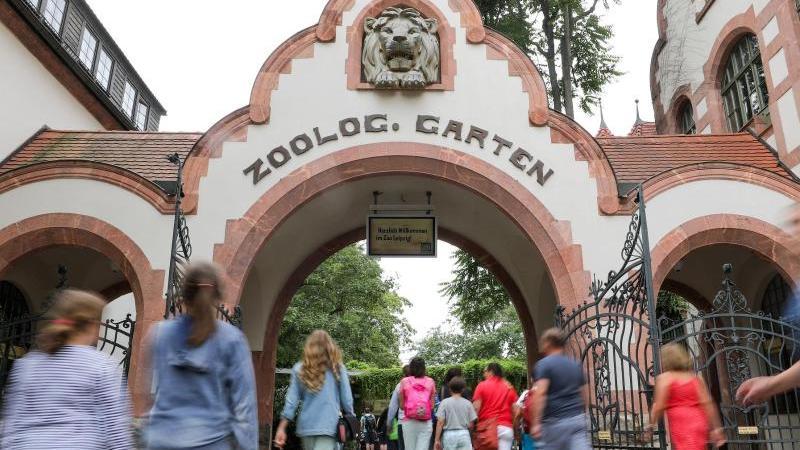 Besucher gehen in den Zoo Leipzig. Foto: Jan Woitas/dpa-Zentralbild/ZB/Archiv
