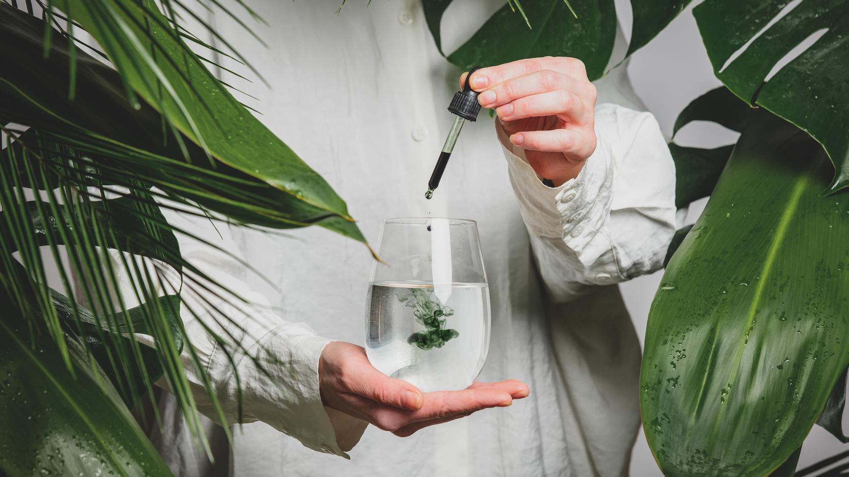 Chlorophyll-Trend: Das kann der Trend wirklich.
