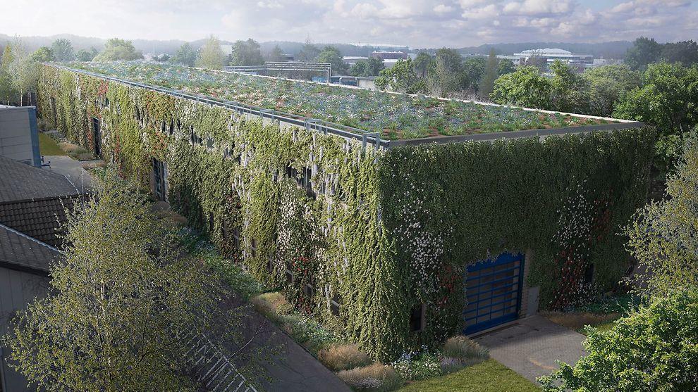 So soll die begrünte Halle 36 in Hamburg in einigen Jahren aussehen.