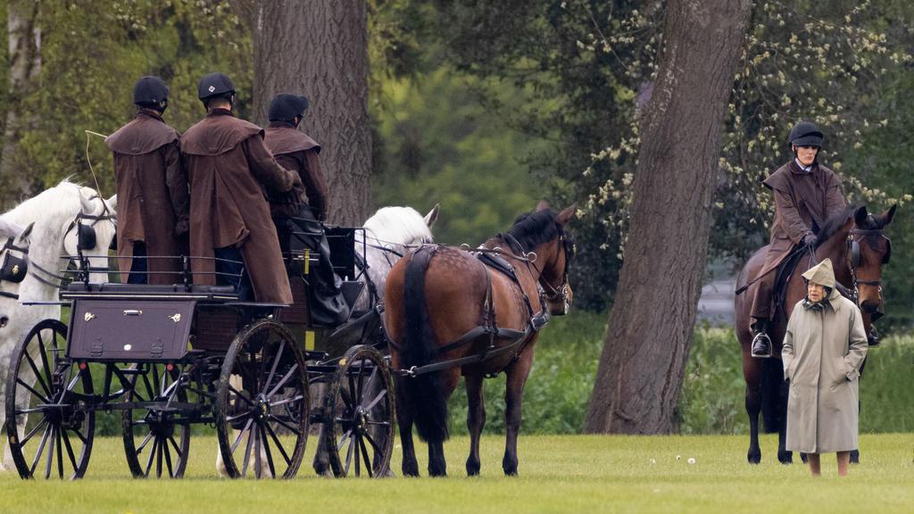 Die Queen sucht Trost bei ihren vierbeinigen Freunden.