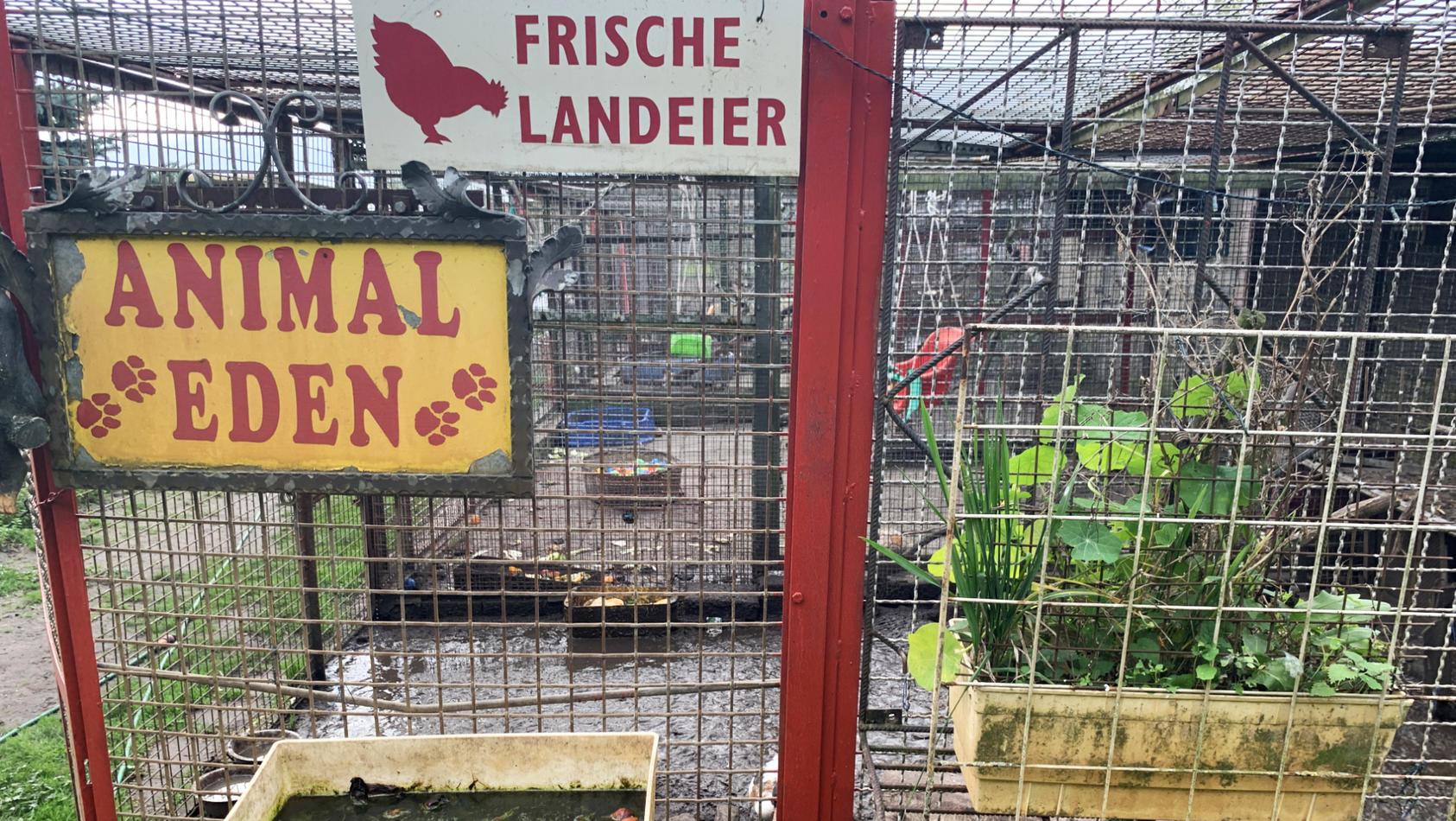 Nichts im Privatzoo Nauen war paradiesisch - stattdessen Dreck und Kot.