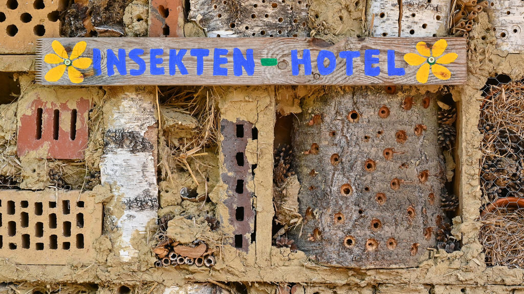 PRODUKTION - 11.05.2021, Brandenburg, Sieversdorf: Ein Insektenhotel für Wildbienen und andere Insekten. Bei Bienen denkt fast jeder erstmal an die Honigbiene. Doch gerade die weniger bekannten Wildbienen sind gefährdet. Foto: Patrick Pleul/dpa-Zentr
