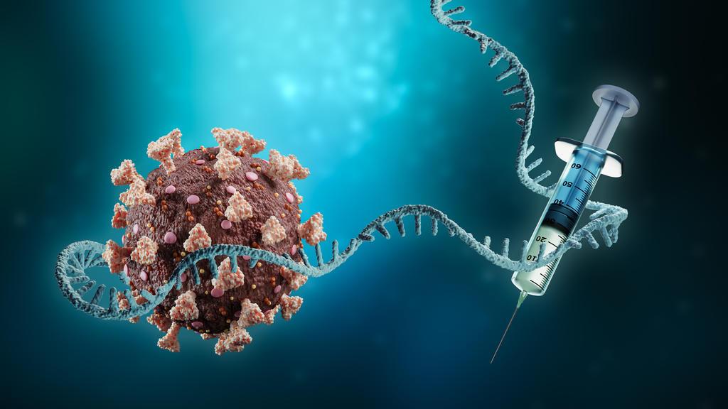 Die mRNA-Impfstoffe basieren auf einem Schnipsel des Virus-Erbguts, das zu einer Art Baubefehl an die Zellen der Geimpften führt.