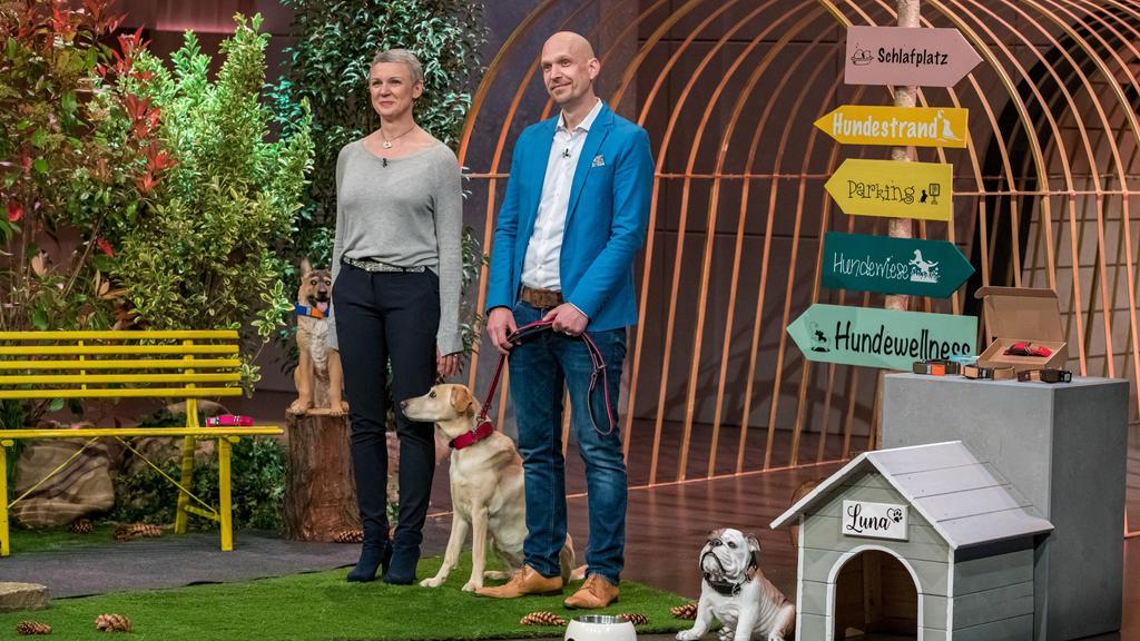 """""""WowWow"""": Ein Hundehalsband mit integrierter Leine"""