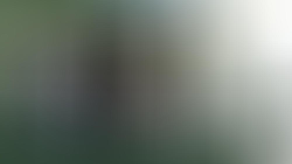 Prinz William und Herzogin Kate im Oldtimer-Land-Rover seines verstorbenen Großvaters.