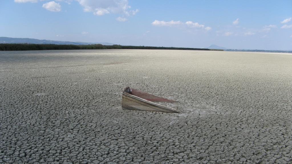 Volvi-See in Griechenland, Artenschwund, Vom Aussterben bedrohte Tierarten