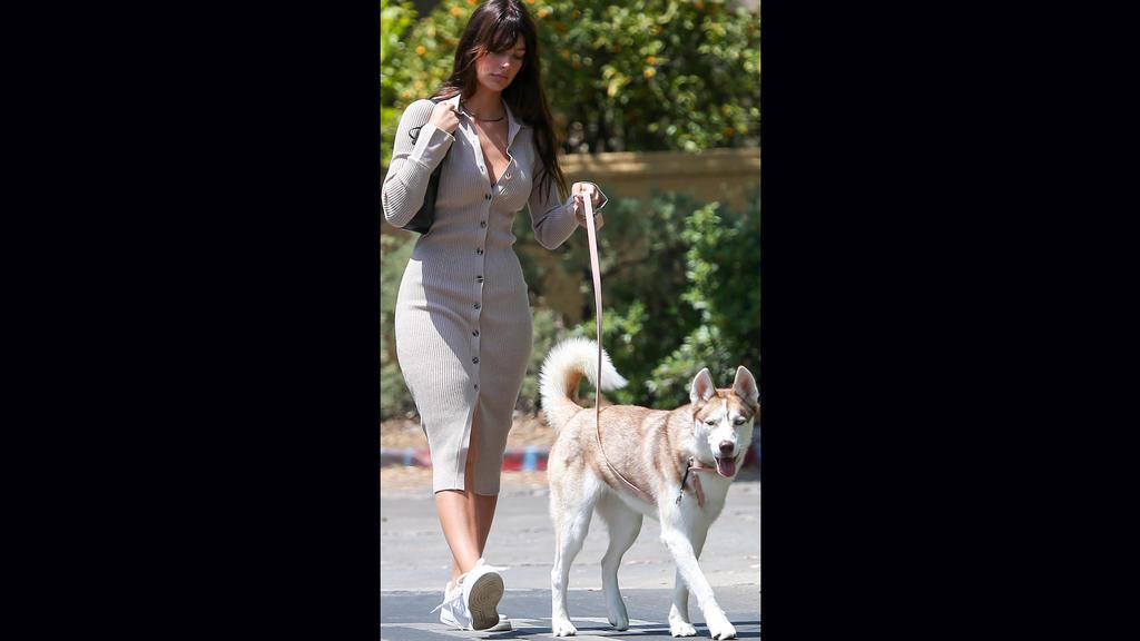 Camila Morrone genießt einen Spaziergang mit ihrem Hund. Aber wo ist bitte der Babybauch?