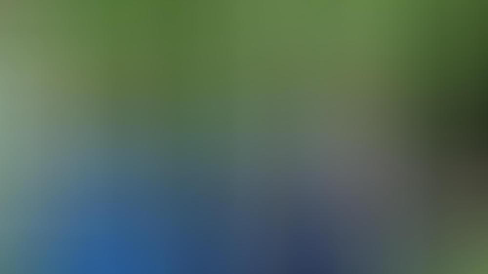 Prinz Charles mit Stella McCartney beim gestrigen Treffen.